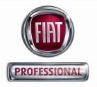 fiat-professional logo